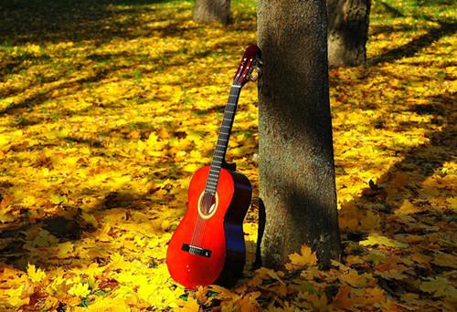 给初学吉他弹唱的朋友:关于按和弦困难