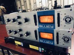 Black Lion Audio Bluey黑狮蓝脸1176压缩器到底怎么样?